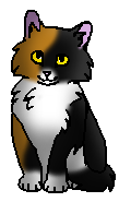 Плющ (котенок)
