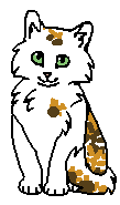 Воробьиная Песенка (котёнок)