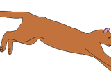 Острозуб (пума)