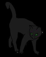 Чернокрылка 1