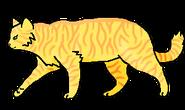 Лепесток (бродяга)