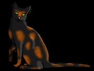 Мохогривка (звёздный предок)