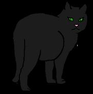 Чернокрылка 2