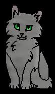 Мглуша (котёнок)