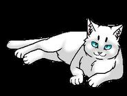 Белоягодка (старейшина)