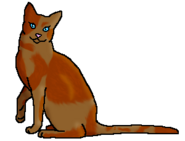 Маргаритка (звёздный предок)