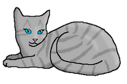 Шёпот Ветерка (кошка клана)