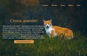 Screenshot 2019-08-13 Коты-воители стань диким(2)