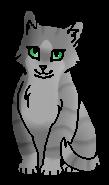 Быстринка (котёнок)