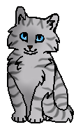 Воробьиное Крылышко (котёнок)