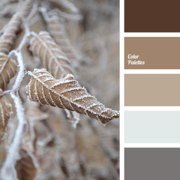 Color-palette-2512