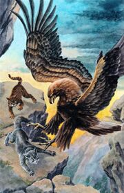 Нападение орла, Восход луны золото