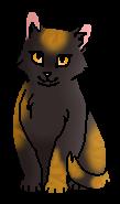 Журавушка (котёнок)