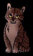 Мышка (котёнок)