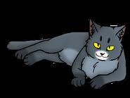 Темнолап (старейшина)