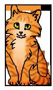 Палёныш (котёнок)