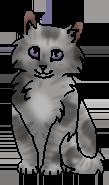 Лавандочка (котенок)