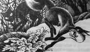 Остролистая прогоняет лису Забытый воин