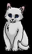 Искорка (котёнок) ПСЗ