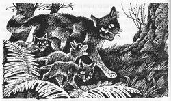 Рыжинка ведёт котят в Грозовое племя Длинные тени