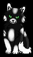 Тенистый Мох (котёнок)