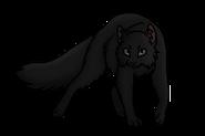 Камышинник (бродяга)