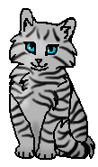 Серебринка (котёнок)