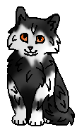 Репейник ГП (котёнок)