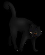 Кротоус (воитель)
