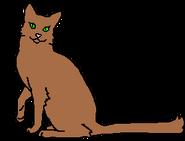 Меднокрылка (звёздный предок)