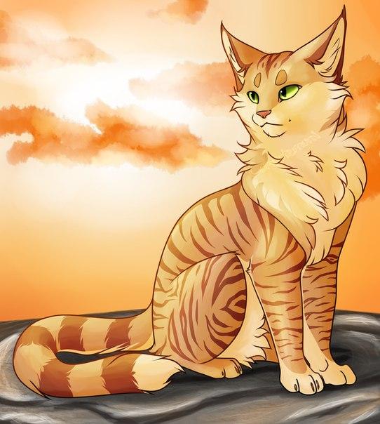 коты воители самые красивые картинки