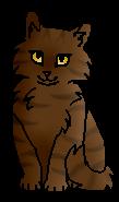 Хвоинка (котёнок)