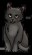 Кремень (котёнок)