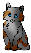 Куделинка (котёнок)
