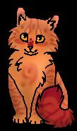 Розочка (котёнок) ГП