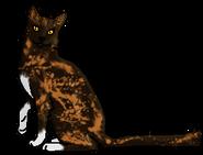 Пестрошёрстка (звёздный предок)