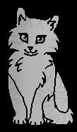 Гроза (котёнок)
