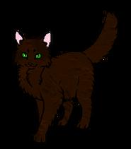 Темнолапка (оруженосец)