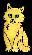 Лепесток (котёнок)