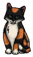 Рыжинка (котёнок)