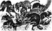 Огнезвёзда атакуют крысы