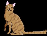 Ящер (звёздный предок)
