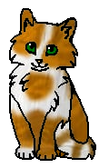 Болотничек котенок