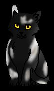 Мотылек (котёнок)