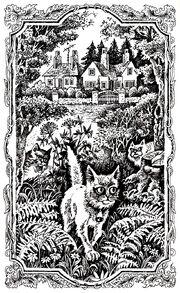 Рыжик идёт в лес Стань диким