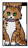 Принцесса (котёнок)