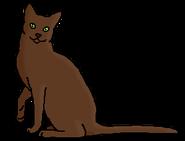 Овсятник (звёздный предок)