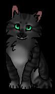 Ивушка котенок