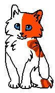 Плескушка (котенок)
