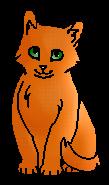 Шиповничек ПВ (котёнок)